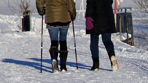 Zwei Wanderer im Schnee.