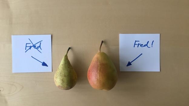 Birne links ist nicht Fred, Birne rechts ist Fred