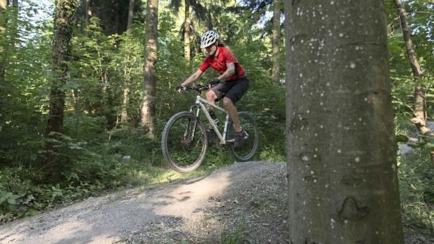 Waldknigge: Damit sich Biker, Jäger und Jogger nicht in die Quere kommen.