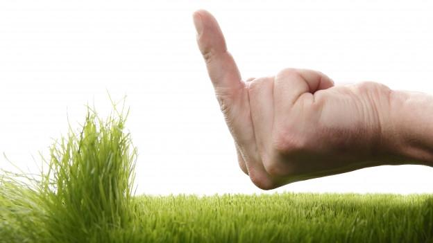 Handzeichen und Gras