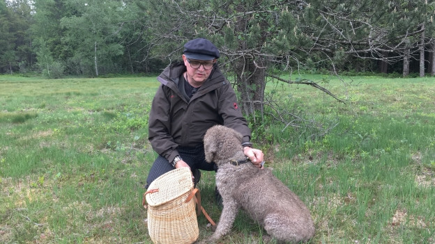 Auf der Suche nach Moorrosen und Vogelbeerbaumblättern - Spitzenkoch Stefan Wiesner unterwegs im Moor mit seinem Hund Levy