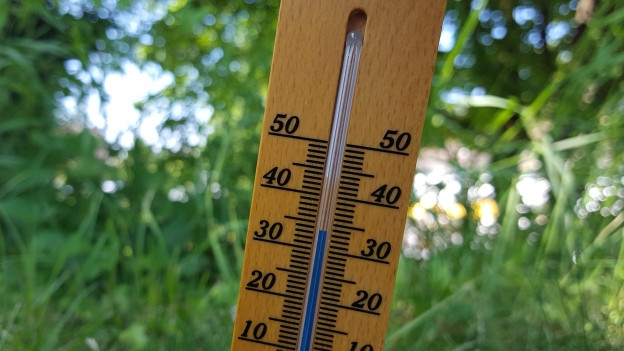 Thermometer in der Natur