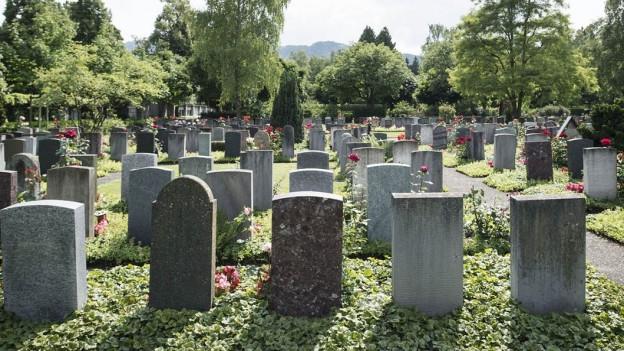 Grabsteine auf Friedhof