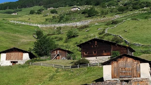 Früher Heuspeicher heute Sommersitz. Die Walser betrieben eine Dreistufen Bewirtschaftung. Im Winter wohnten sie im Tal, im Frühling siedelte man auf das Maiensäss und im Sommer auf die Alp. Viele der traditionellen Ställe stehen heute aber leer.