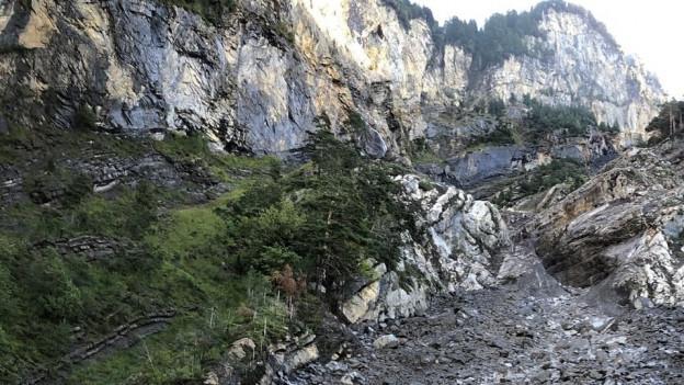 Ein Murgang reisst Gestein und Erde Richtung Tal.