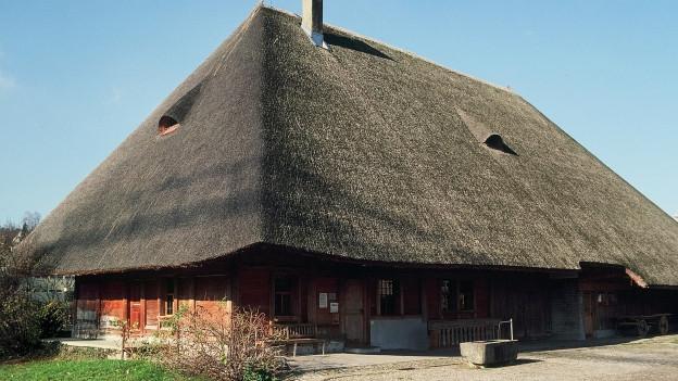 Ein traditionelles Aargauer Bauernhaus mit Strohdach