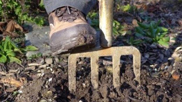 Ein Schuh auf einer Stechgabel, die in der Erde steckt.