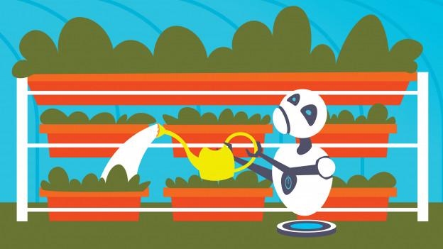 Der Roboter im Garten.
