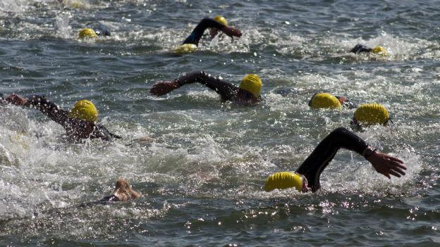 Schwimmer im offenen Gewässer