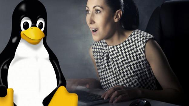 Der Pinguin Tux ist das Maskottchen der Linux-Betriebssysteme.