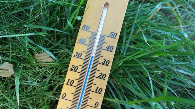 Quecksilber-Thermometer auf dem Gras liegend, mit über 30 Grad anzeigend
