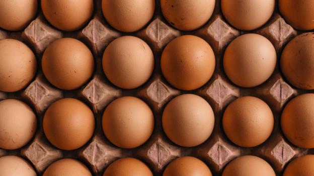 Viele Eier in einer grossen Eierschachtel.