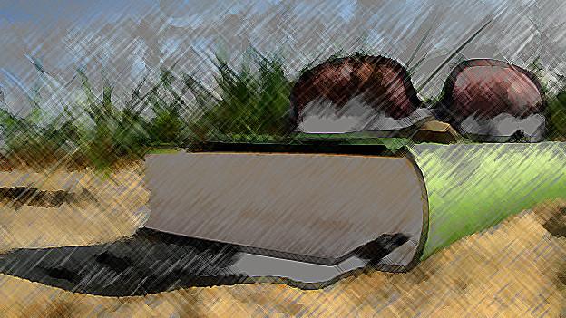 Buch mit Sonnenbrille an einem Strand