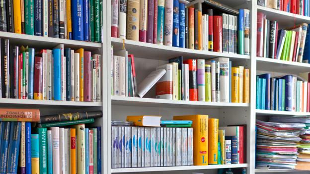 Darf in keinem Bücherschrank fehlen: das Kompendium.