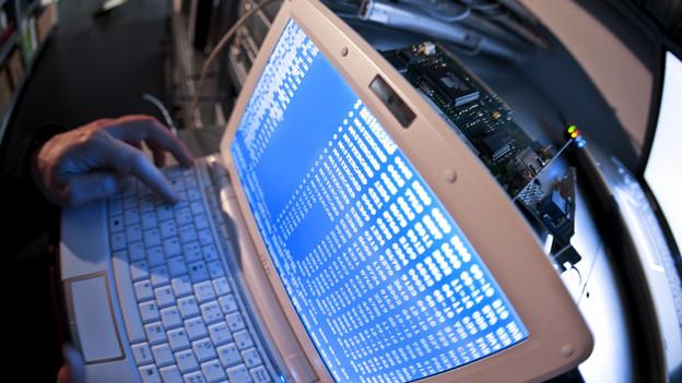 «Trojaner» gelangen unbemerkt auf den Rechner und richten dort Schaden an.