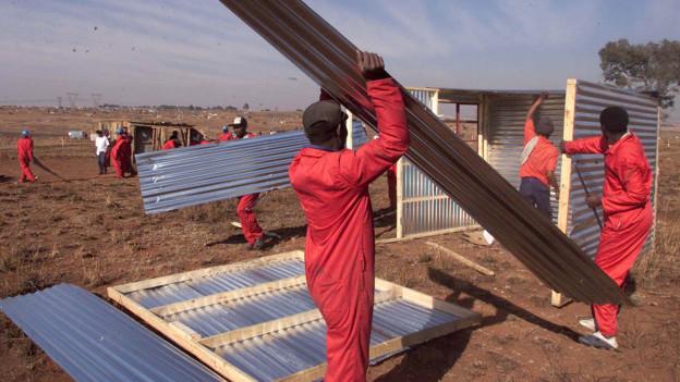Männer bauen mit Wellblech eine Hütte.