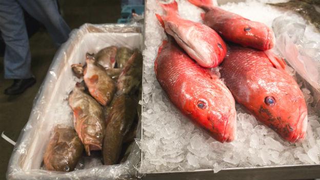 Fische auf einem Markt.