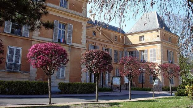 Blick auf ein sandfarbenes Rathaus. Davor blühen Bäume.