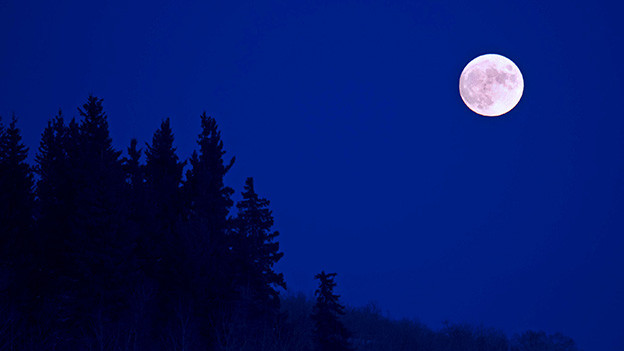 Nicht der Mond ist blau beim Phänomen «Blue Moon».