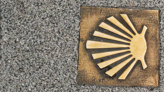 Metallbeschlag, der eine Muschel zeigt