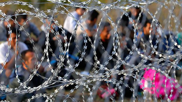 Nahaufnahme eines Stacheldrahtzauns an der serbisch-ungarischen Grenze, dahinter verschwommene Gestalten.