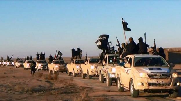 Eine Fahrzeugkolonne des IS.
