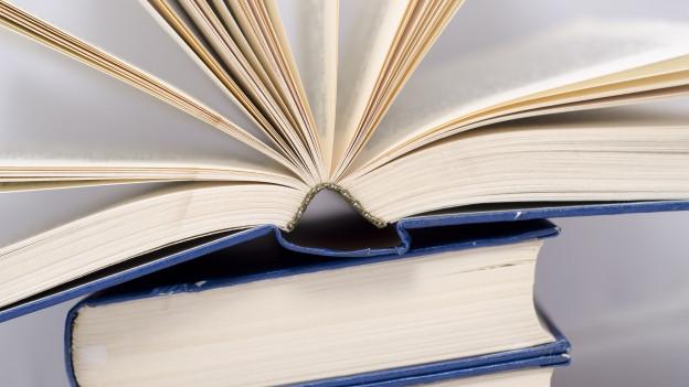 Ein aufgeschlagenes Buch auf zwei Büchern.