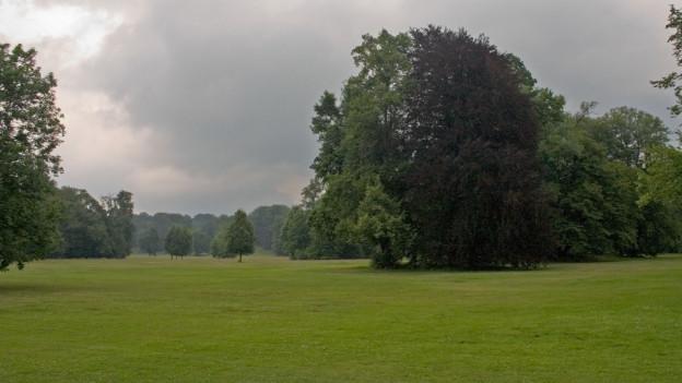 Park mit grosser Wiese und Bäumen.