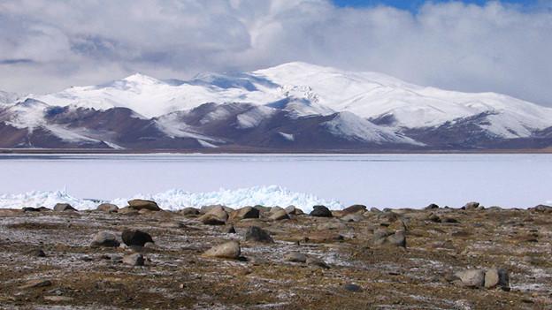 Karte Steppenlandschaft, im Hintergrund hohe, verschneite Berge