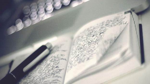Eine vollbeschriebene Seite des Tagebuchs.