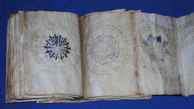 Ein Bild des Voynich-Manuskripts.