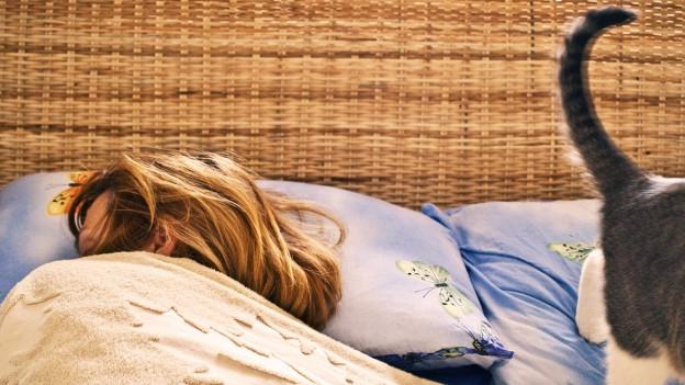 Frau liegt im Bett und hat die Decke über ihren Kopf gezogen. Eine Katze läuft durchs Bild.