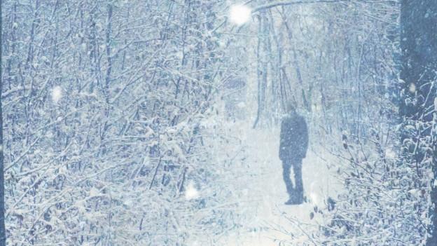 Eine verschneite Landschaft, in der Ferne eine Person