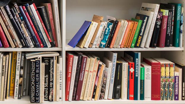 Sachbücher über Kindererziehung, wirtschaftlichen Wachstumswahn und Archäologie.