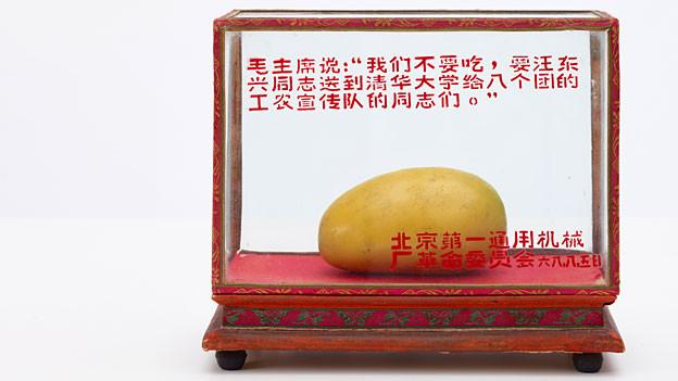 Mango-Vitrine der Allgemeinen Werkzeugmaschinenfabrik Beijing.