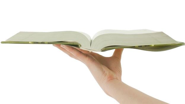 Der 23. April ist seit 1995 ein von der UNESCO eingerichteter Feiertag für das Kulturgut Buch.
