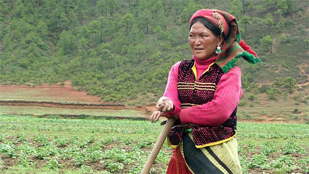 Eine Mosuo-Frau in traditioneller Bekleidung bei der Arbeit auf dem Feld.