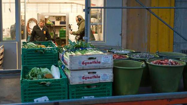 Futtermeister Beat Rüegsegger bereit die Fütterung der Tiere vor.