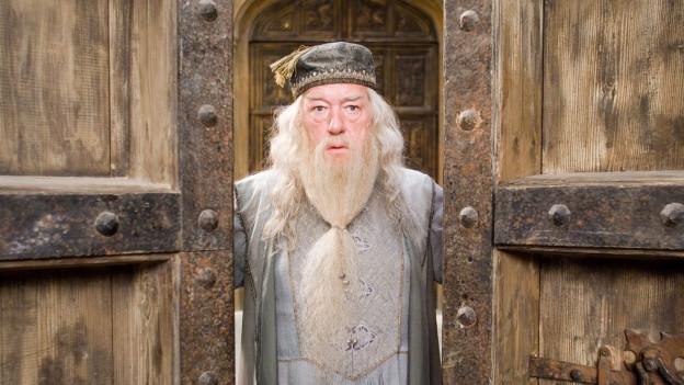 Dumbledore steht zwischen zwei Türen.