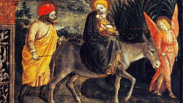 Ein Esel zieht ein Fuhrwerk, darauf sind Fässer und ein Mann.