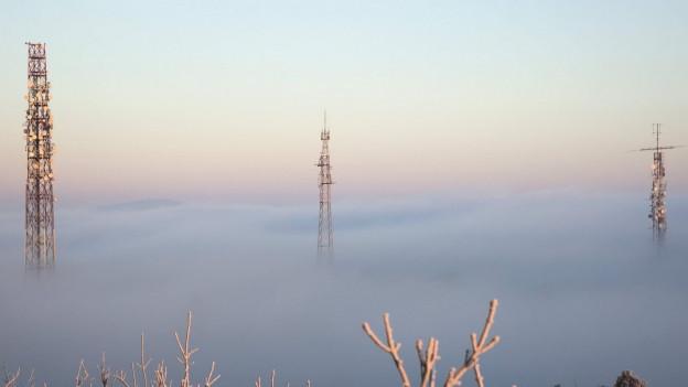 Strommäste über dem Nebel.