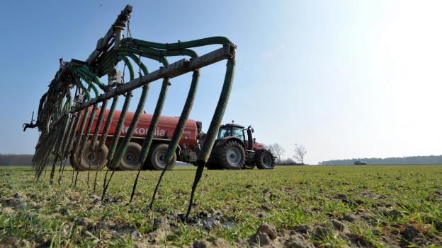Auf dem Feld: Ein grosser Rächer im Vordergrund verdeckt den Traktor im Hinergrund.