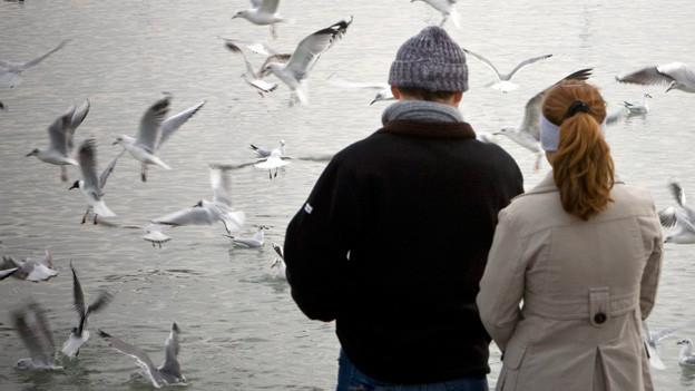 Ein Paar schaut auf einen See, über dem Möwen fliegen.