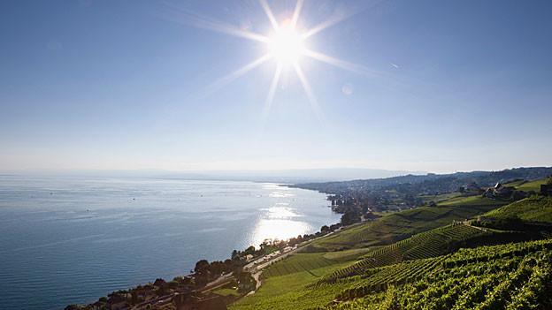 Sonne scheint am Genfersee