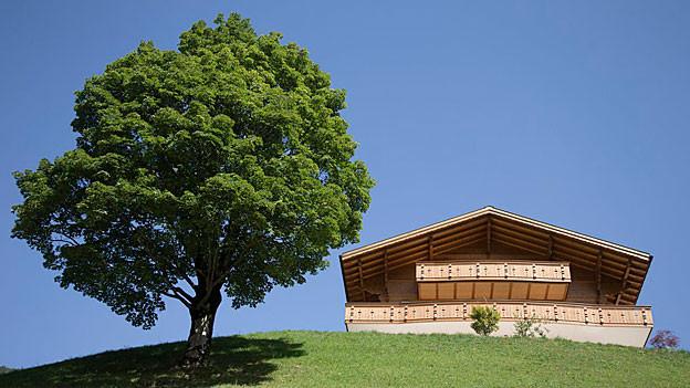 Chalet im Berneroberland