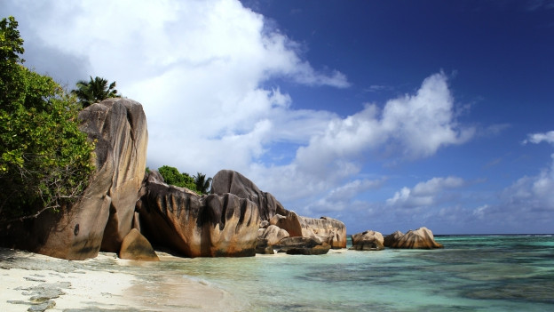 Bild von einem Strand.