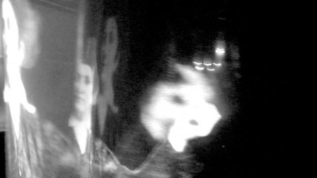 Aufnahme aus dem Kafka-Museum Prag: ein Bild des Schriftstellers wird mehrfach verzerrt gespiegelt.