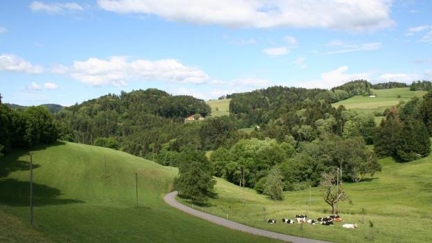 Irgendwo im Zürcher Oberland. Hier bei Turbenthal im Tösstal.