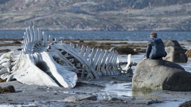Leviathan von Andrei Swjagintsow