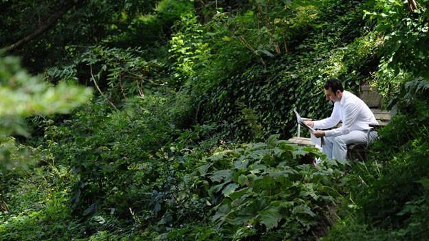Sommerzeit, Lesezeit. Ein Mann im alten botanischen Garten in Zürich, 2012.
